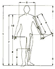 Bicicletta trovare la misura giusta - Normativa abbigliamento cucina ...